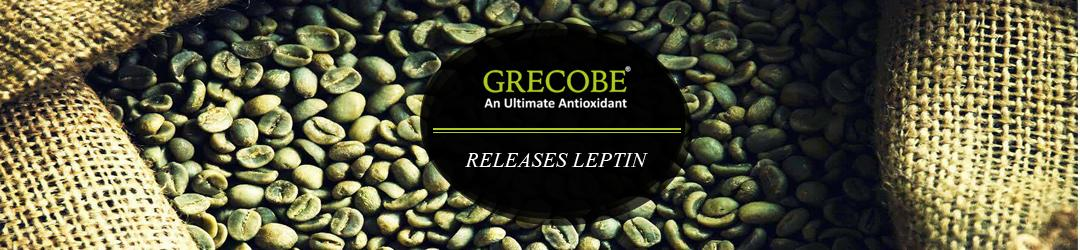 green coffee Releases leptin