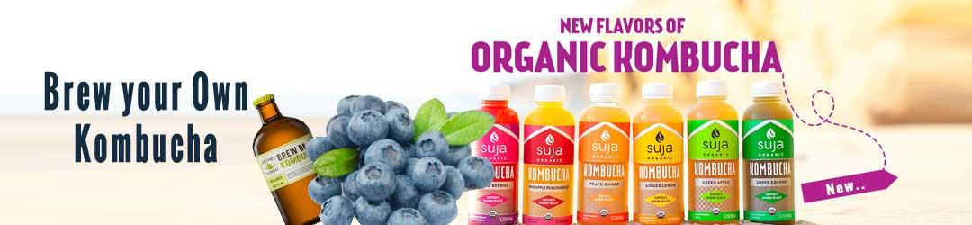 Healthy Beverages Kombucha